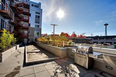 Veer Lofts roof top deck